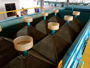 09-ถังเลี้ยงปลานิลความหนาแน่นสูงระบบน้ำหมุนเวียน