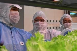 03-เข้าเยี่ยมชม Plant Factory ของบริษัท 808 Factory (3)